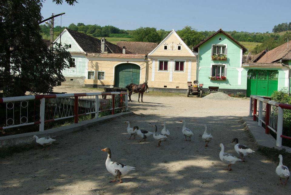 Malancrav, near Sighisoara, Romania