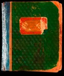 Paddy's green diary before conservation